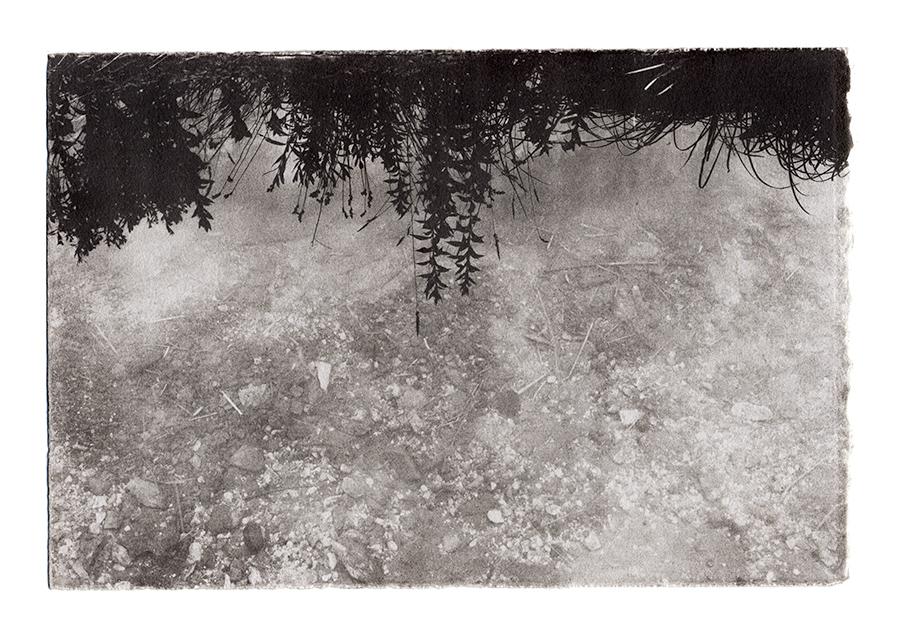 Acid Mine Drainage Print